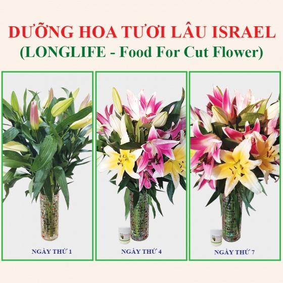 Bột cắm hoa cắt cành của Israel (hộp 1kg pha được 100L dung dịch), giúp shop hoa bảo quản hoa tươi lâu