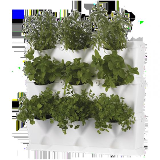 Khung trồng cây, trồng rau sạch tại nhà của Châu Âu (3 khung xếp chồng lên nhau và 1 khay chứa nước)