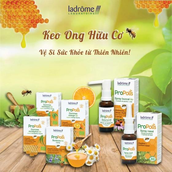 Kẹo ngậm hữu cơ keo ong và tinh dầu Eucalyptus
