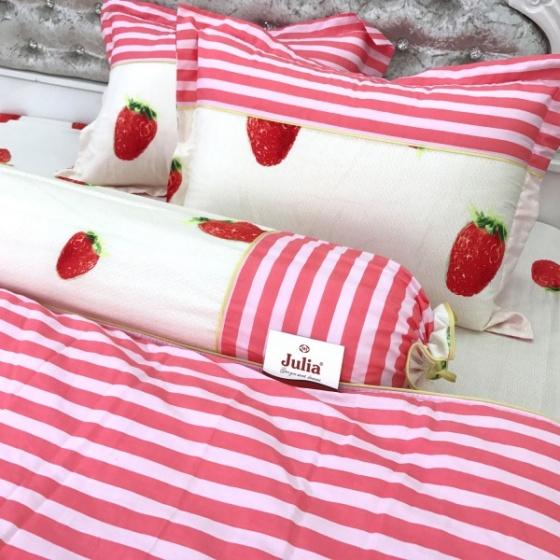 Bộ ga gối 4 món cotton Hàn Julia249BK16