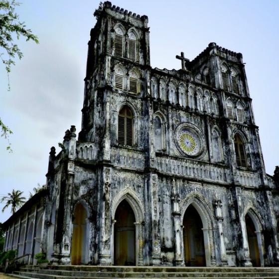 QN7-2sao. Du lịch Bình Định – Phú Yên - về xứ Nẫu ngắm hoa vàng cỏ xanh