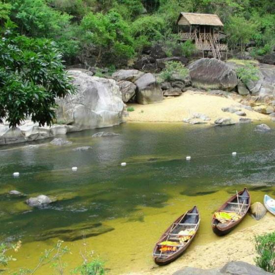 QN7-3sao. Du lịch Bình Định – Phú Yên - về xứ Nẫu ngắm hoa vàng cỏ xanh