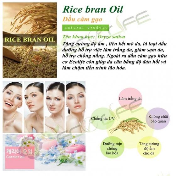 Dầu cám gạo Ecolife trắng da, chống nắng, dưỡng ẩm