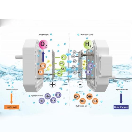 Máy lọc nước Hydrogen ion kiềm Kangaroo KG100EO
