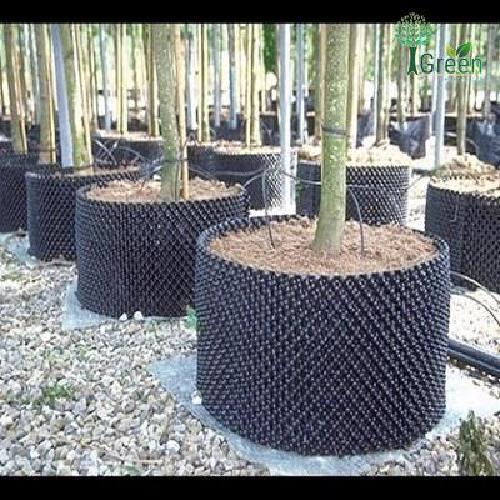 Bầu nhựa ươm rễ cây thông minh cao 20cm, dài 5m
