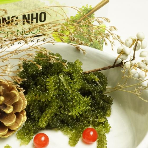 Rong nho tách nước SeA-VIỆT (11 gói x 20g) - Đặc sản biển Nha Trang