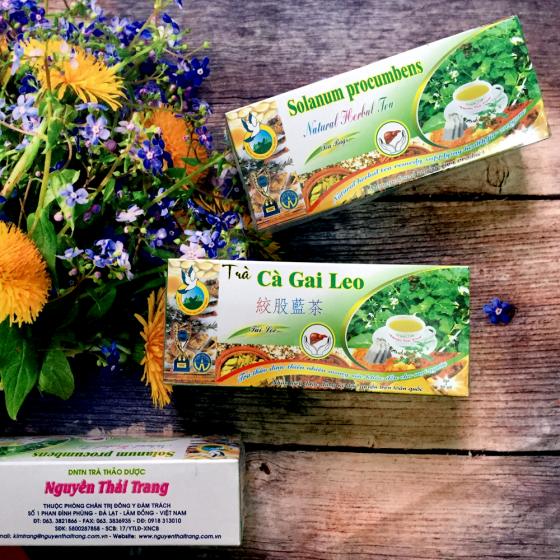 Trà cà gai leo trị viêm gan-hộp 50 túi lọc x 2g-Nguyên Thái Trang –thảo dược thiên nhiên – tốt cho sức khỏe
