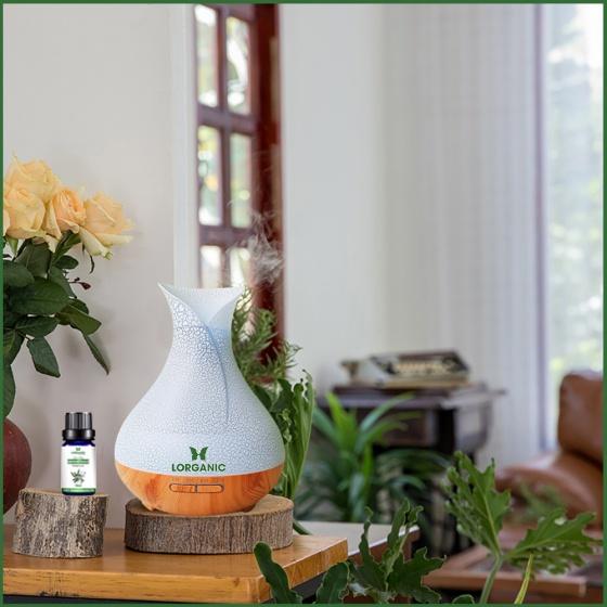 Máy khuếch tán, máy xông tinh dầu Lorganic bình hoa vân rạn đế gỗ vàng FX2058
