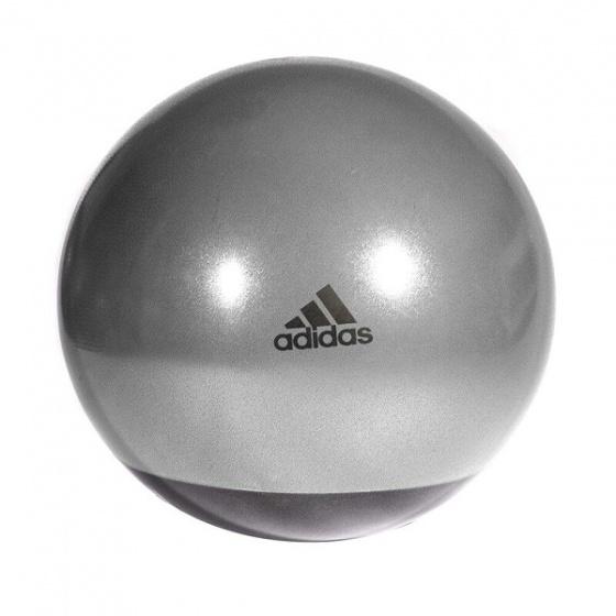 Bóng tập Yoga, tập Gym Adidas 65cm Premium ADBL14246