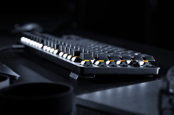 Bàn phím Razer BlackWidow Lite–Silent Mechanical-US Layout-Orange Switch RZ03-02640100-R3M1