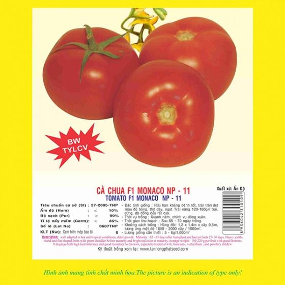 Hạt giống cà chua F1 MONACO NP 11 5GR
