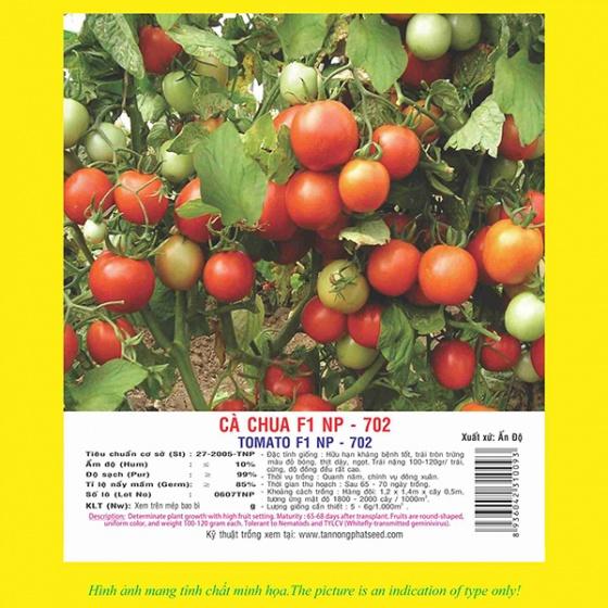 Hạt giống cà chua F1 NP 702 5GR