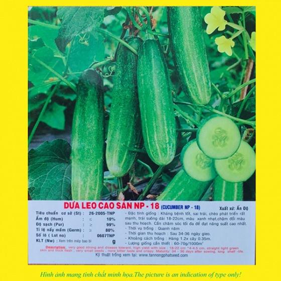 Hạt giống dưa leo cao sản NP 18 100GR