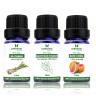 Combo 3 loại tinh dầu sả chanh + bạch đàn chanh + bưởi chùm Lorganic (10ml x3)