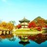 Tour Hàn Quốc - Everland - City Tour